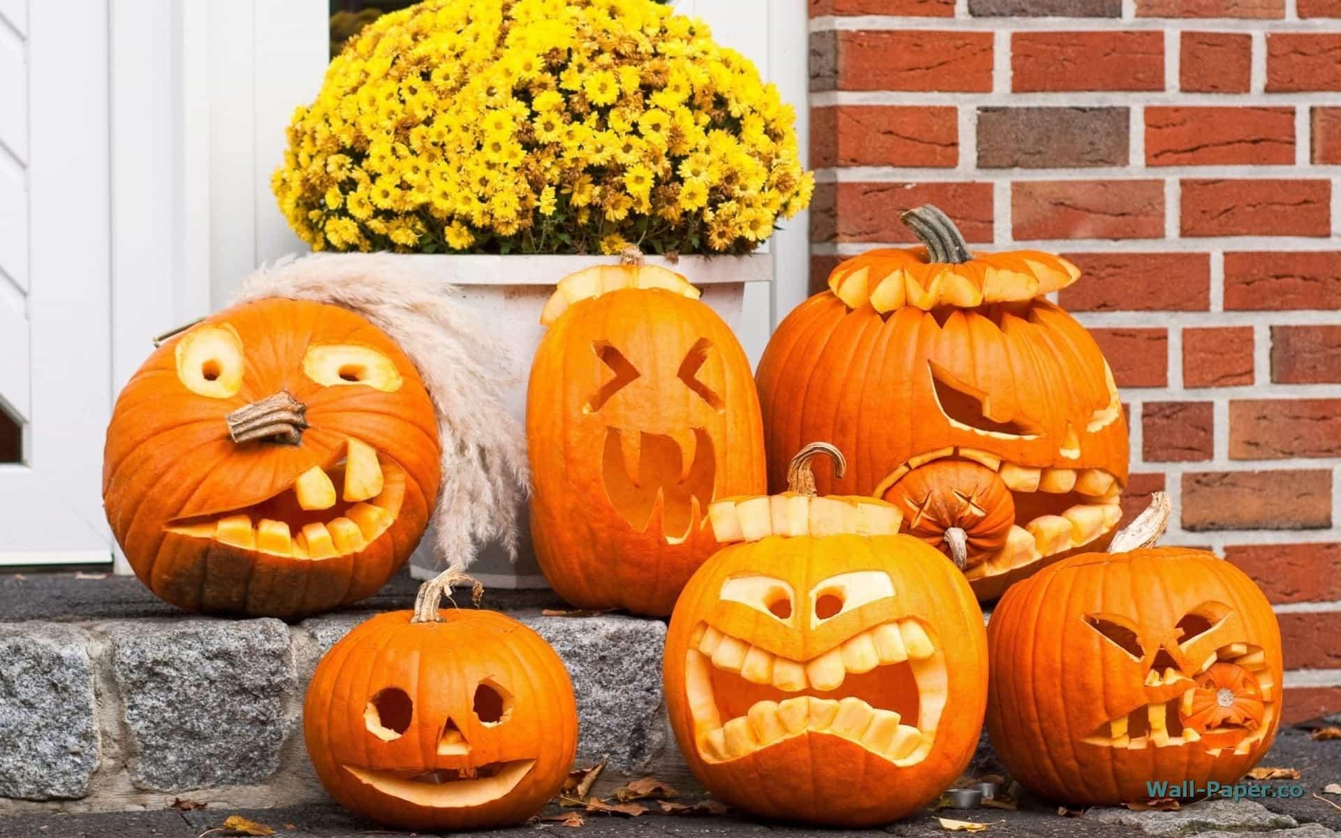 Come Fare Una Zucca Di Halloween Vera.Come Intagliare La Zucca Di Halloween Con I Bambini