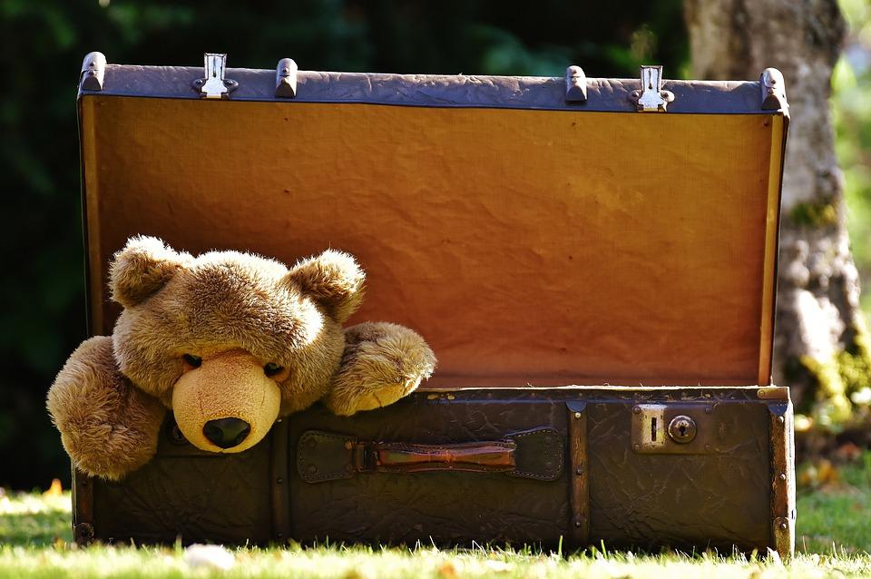 Ho una valigia piena di…Rumori! La Valigia dei Rumori: un gioco educativo e divertente per i bambini più piccoli