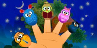Le mani e le dita
