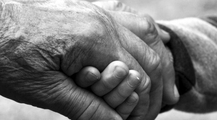 Auguri a tutti i nonni del mondo! Buona festa dei nonni!
