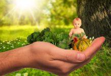 sviluppo cerebrale del bambino